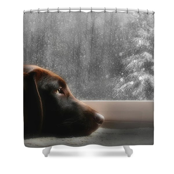 Dreamin' of a White Christmas Shower Curtain by Lori Deiter