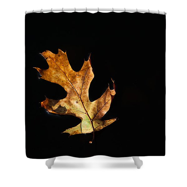 Dry On Water Shower Curtain by Karol  Livote