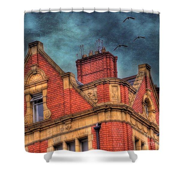 Dublin House Roof Top Shower Curtain by Juli Scalzi