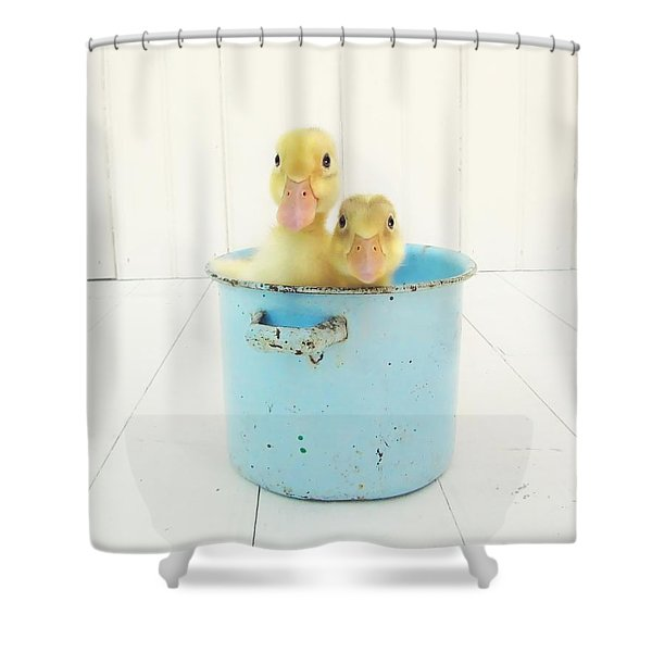 Duck Soup Shower Curtain by Amy Tyler
