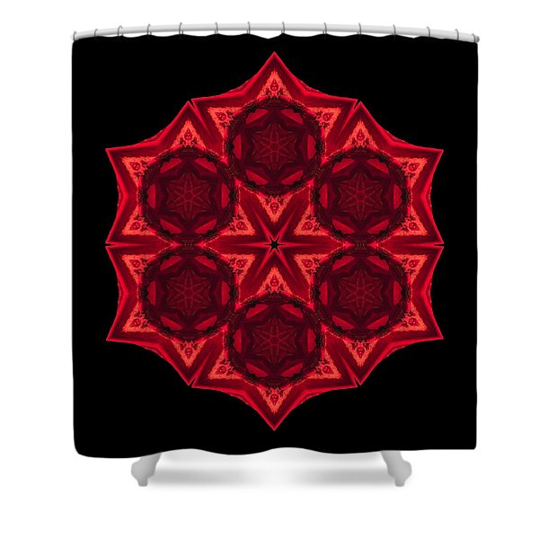 Dying Amaryllis III Flower Mandala Shower Curtain by David J Bookbinder