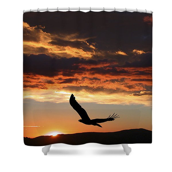 Eagle at Sunset Shower Curtain by Shane Bechler