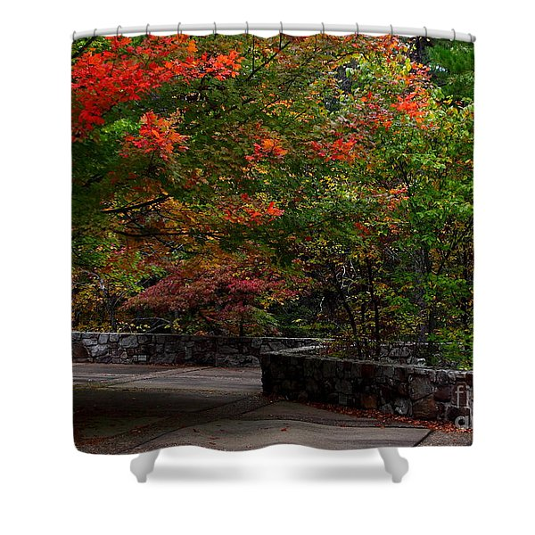Early Fall At Talimena Park Shower Curtain by Robert Frederick