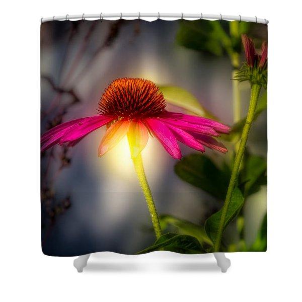 Echinacea Sunrise Shower Curtain by Bob Orsillo