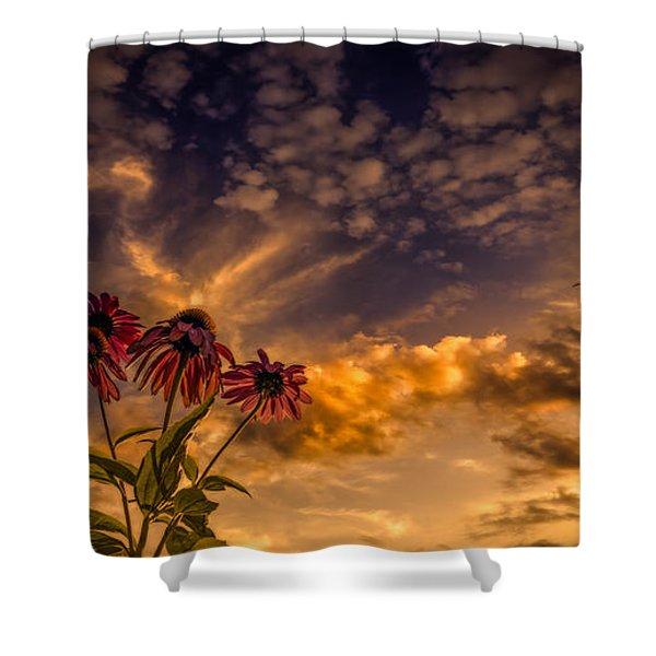Echinacea Sunset Shower Curtain by Bob Orsillo
