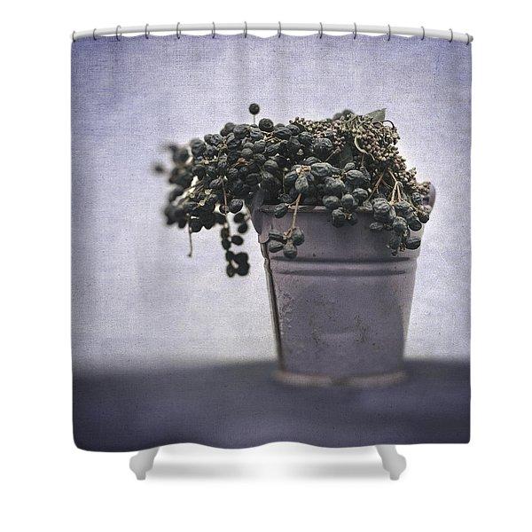 El Tiempo Lo Dira Shower Curtain by Taylan Soyturk