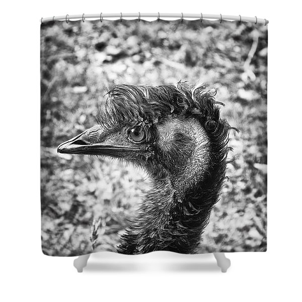 Emu Head Shower Curtain by Wim Lanclus