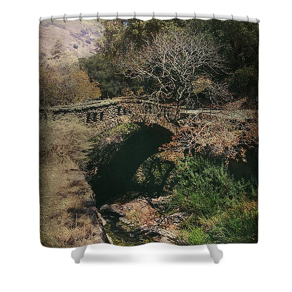 Enchant Me Shower Curtain by Laurie Search