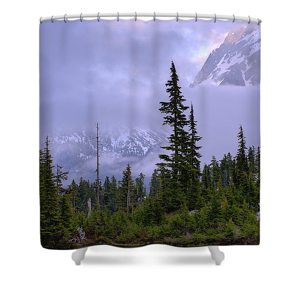 Enduring Winter Shower Curtain by Chad Dutson