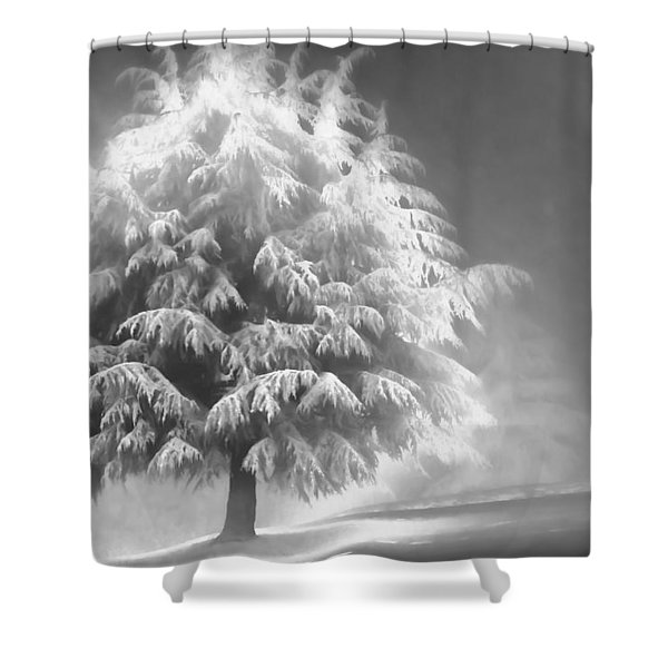 Enlightened Tree Shower Curtain by Don Schwartz