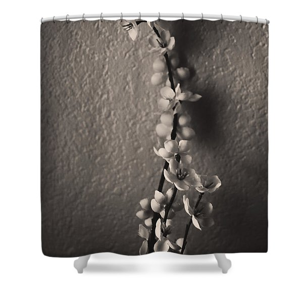 Eternal Shower Curtain by Laurie Search