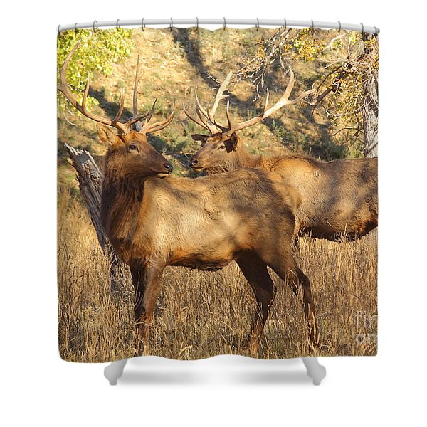 Evening Sets On The Elk Shower Curtain by Robert Frederick