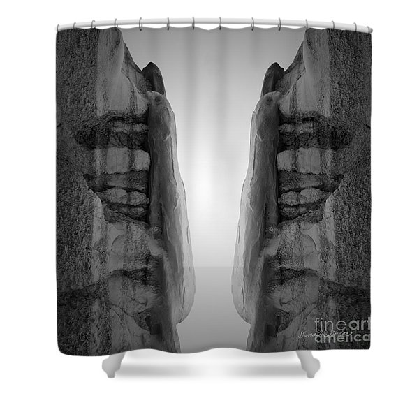 Face To Face Montage I Shower Curtain by David Gordon