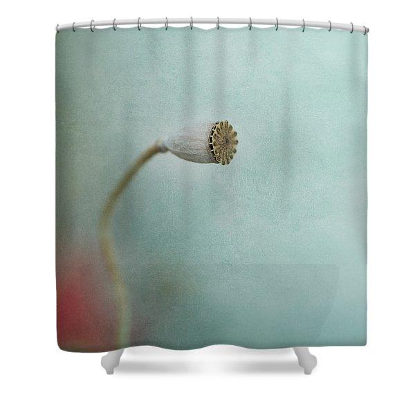 faded summer I Shower Curtain by Priska Wettstein