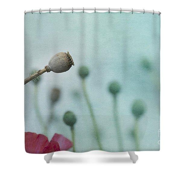faded summer III Shower Curtain by Priska Wettstein