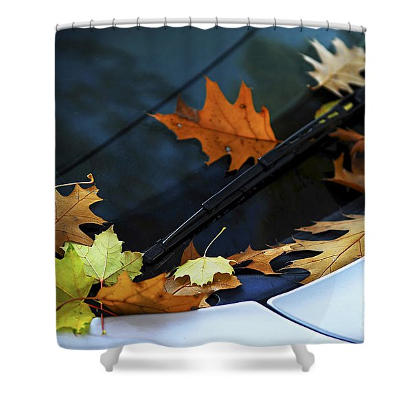 Fall Leaves On A Car Shower Curtain by Elena Elisseeva