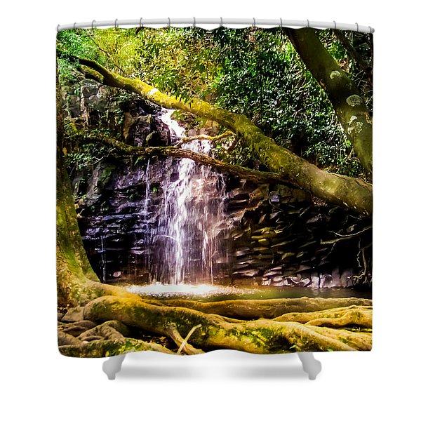 FANTASY FOREST Shower Curtain by KAREN WILES