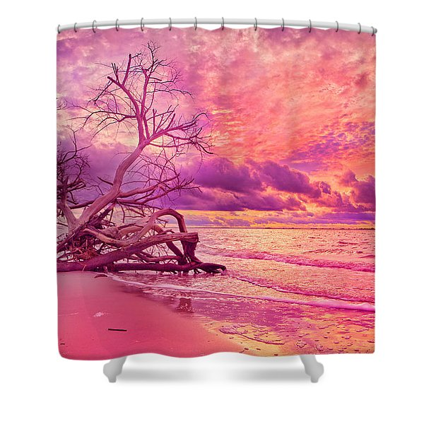 Farewell To The Day Shower Curtain by Betsy C  Knapp