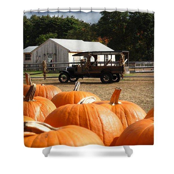 Farm Stand Pumpkins Shower Curtain by Barbara McDevitt