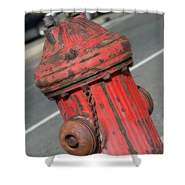 Fire Hydrant Shower Curtain by Lisa  Phillips