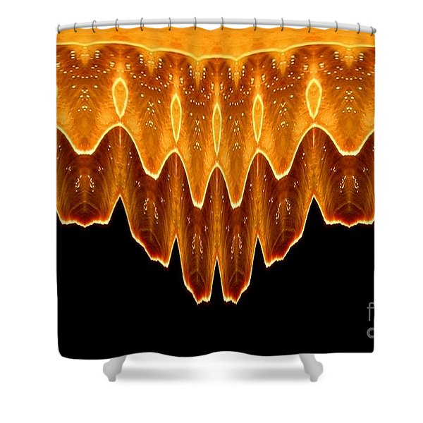 Fireworks Melting Abstract Shower Curtain by Rose Santuci-Sofranko