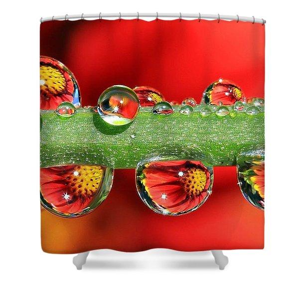 Firey Drops Shower Curtain by Gary Yost