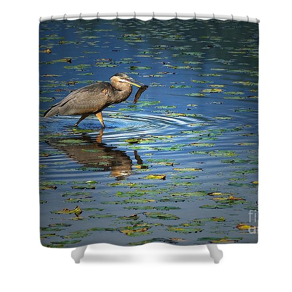 Fish For Dinner Shower Curtain by Sharon  Talson
