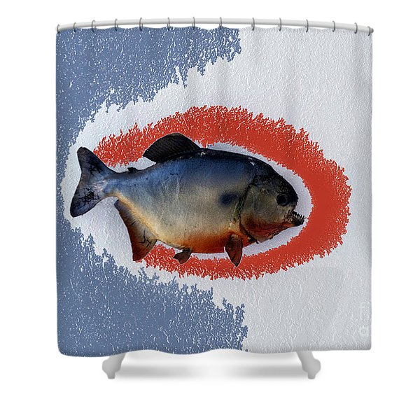 Fish Mount Set 12 B Shower Curtain by Thomas Woolworth