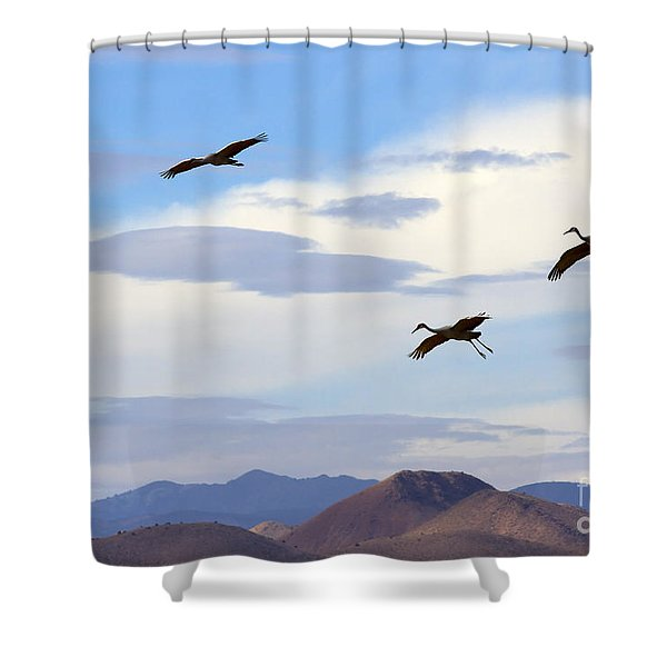Flight Of The Sandhill Cranes Shower Curtain by Mike  Dawson