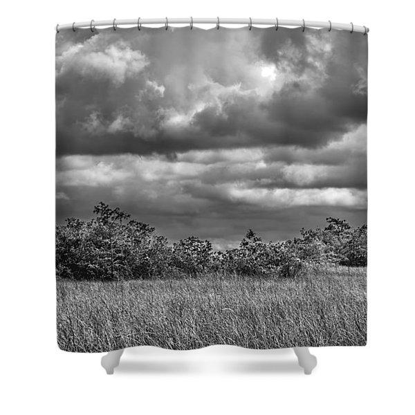Florida Everglades 0184bw Shower Curtain by Rudy Umans