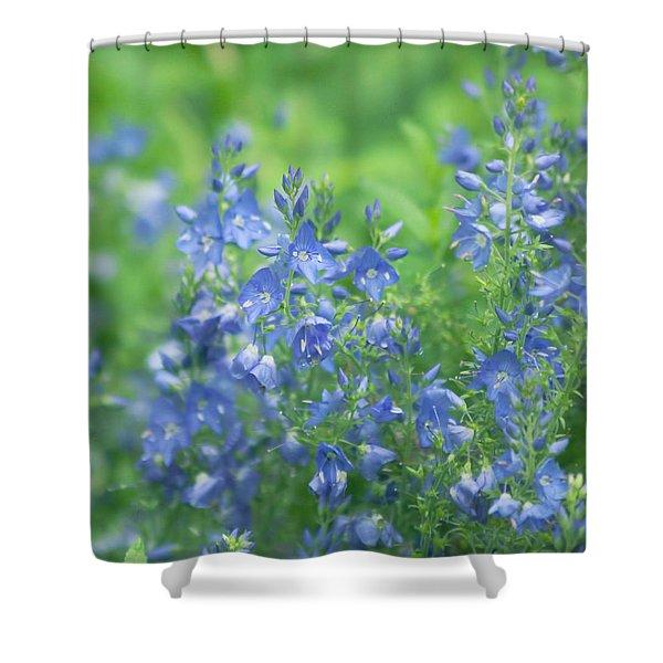Flower Frenzy Shower Curtain by Kim Hojnacki