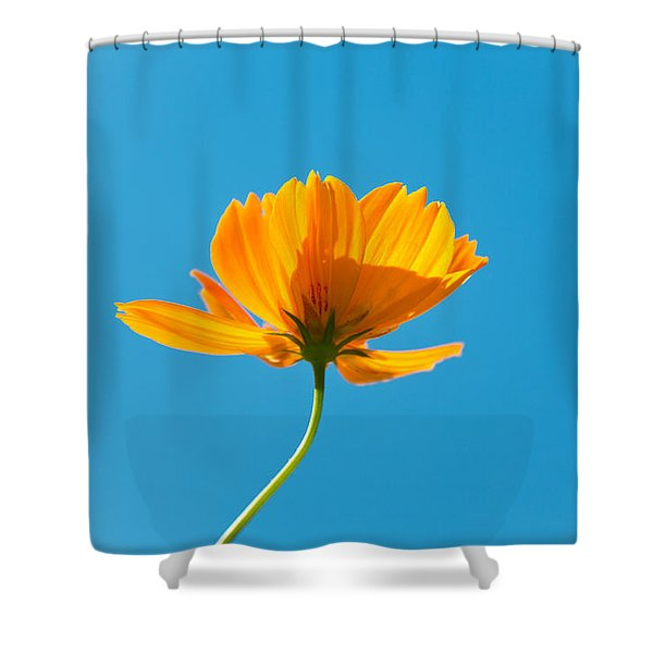 Flower - Growing up in Brooklyn Shower Curtain by Mike Savad