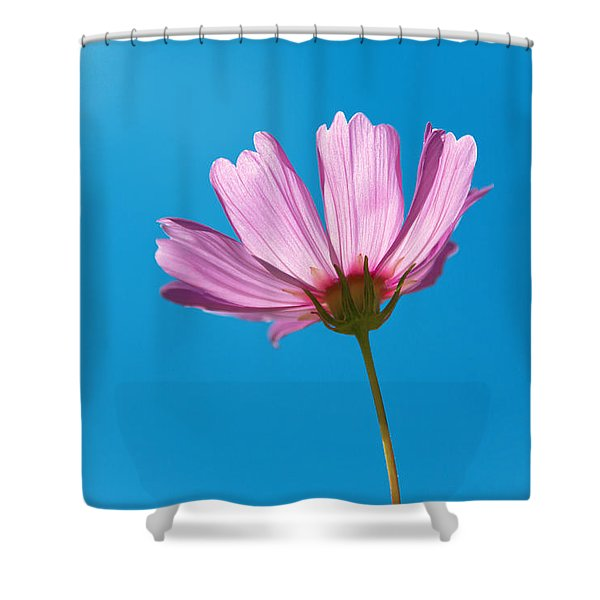 Flower - Growing Up In Philadelphia Shower Curtain by Mike Savad