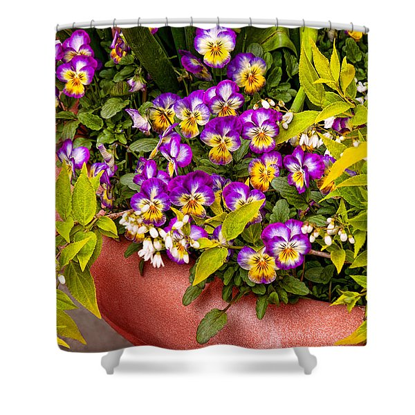 Flower - Pansy - Purple Posies  Shower Curtain by Mike Savad