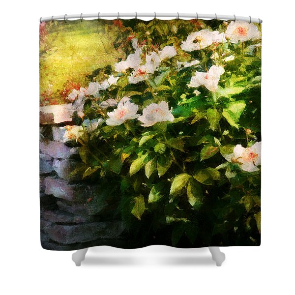 Flower - Rose - By a wall  Shower Curtain by Mike Savad