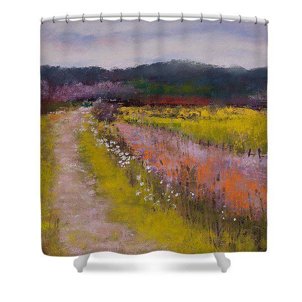 Follow The Daisies Shower Curtain by David Patterson