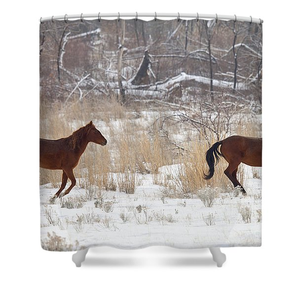 Follow the Leader Shower Curtain by Mike  Dawson