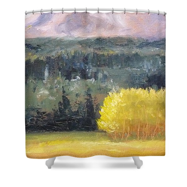 Foot Of The Mountain Shower Curtain by Nancy Merkle