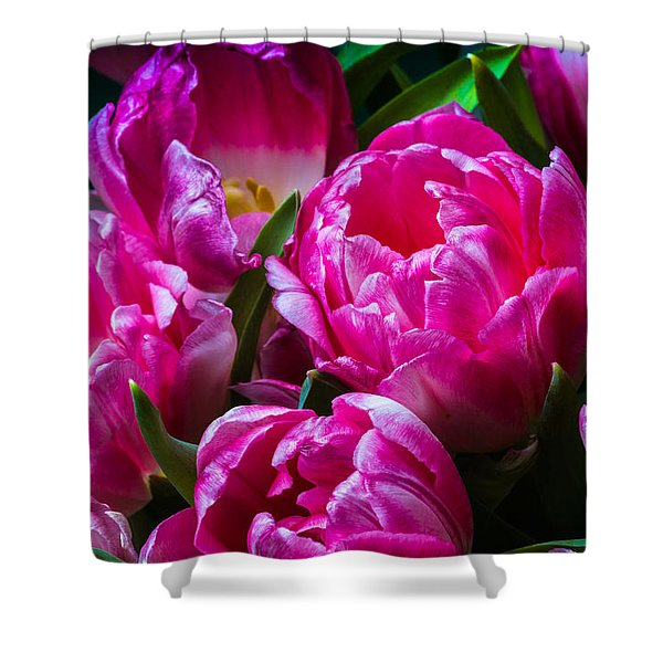 For You - Featured 3 Shower Curtain by Alexander Senin