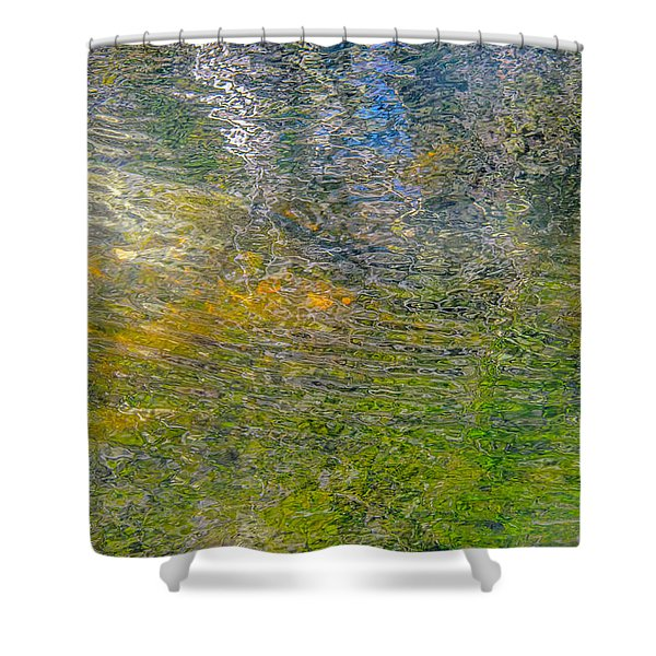 Forest Reflection Shower Curtain by Roxy Hurtubise