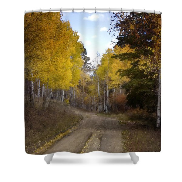 Forest Road In Autumn Shower Curtain by Ellen Heaverlo