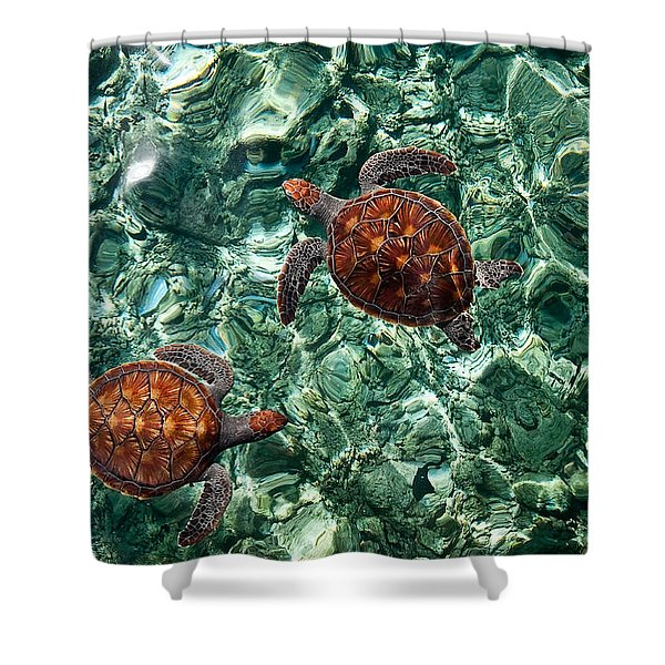Fragile Underwater World. Sea Turtles In A Crystal Water. Maldives Shower Curtain by Jenny Rainbow