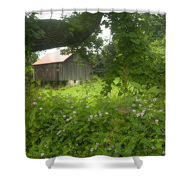 Framed in green Shower Curtain by Paul W Faust -  Impressions of Light