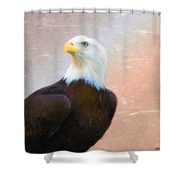 Freedom Flyer Shower Curtain by Jeff Kolker