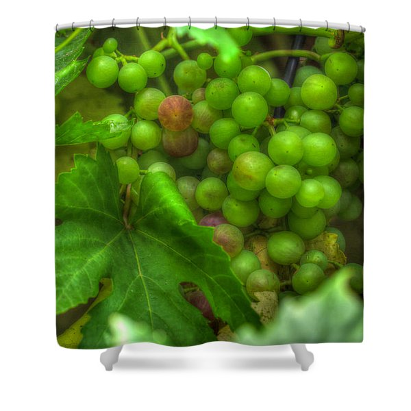 Fruit Bearing Shower Curtain by Heidi Smith