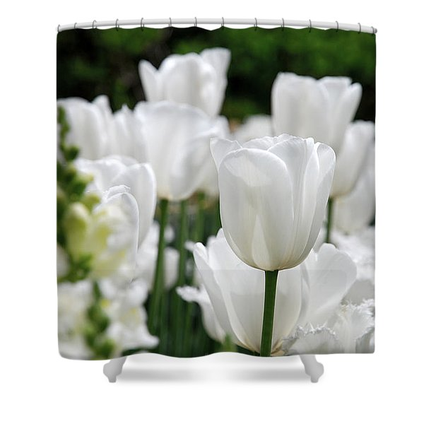 Garden Beauty Shower Curtain by Jennifer Lyon