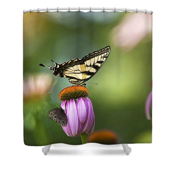 Garden Rainbow Butterfly Shower Curtain by Christina Rollo