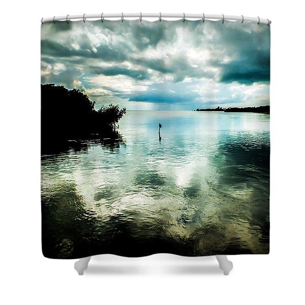 GEIGER KEY Shower Curtain by KAREN WILES