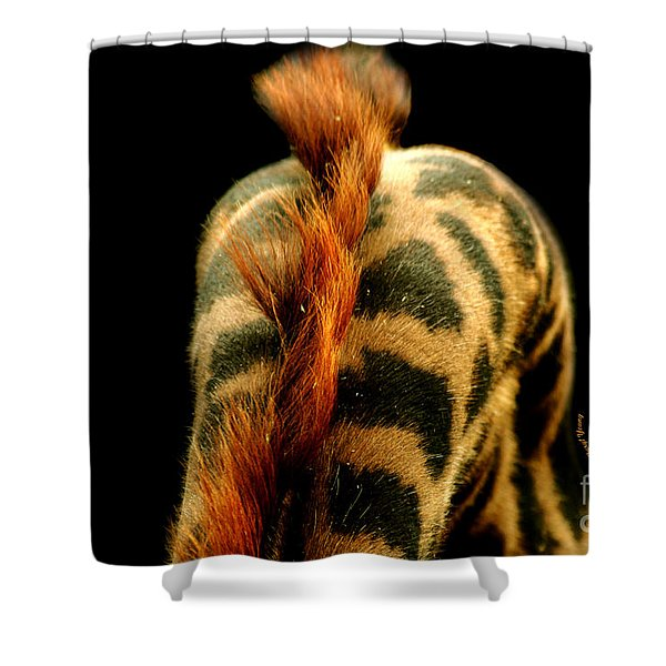 Giraffe Patterns Shower Curtain by Cheryl Young
