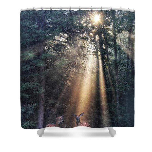 God's Creatures Shower Curtain by Lori Deiter